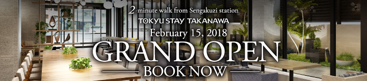Apartment Hotels At Tokyu Stay