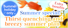 Grand Savings! Summer Plan