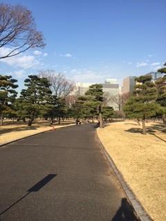 皇居外苑2.jpg