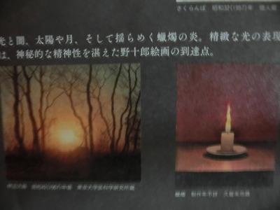 CIMG4633.JPG