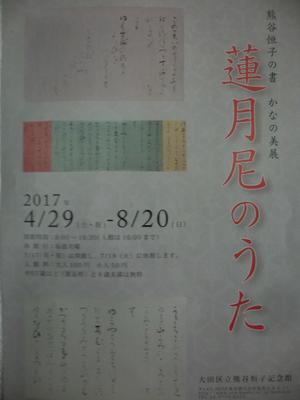 CIMG5971.JPG
