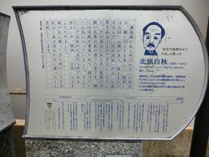 CIMG5987.JPG