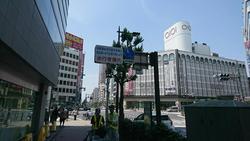 横断歩道後 右.JPG