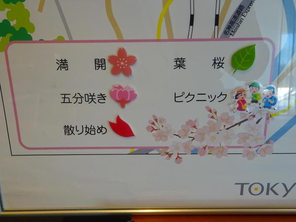 桜MAP2.JPG