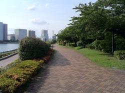 越中島公園2.jpg