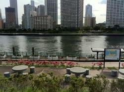 越中島公園4.jpg