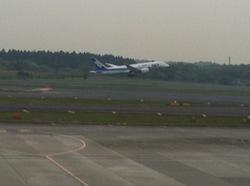 成田空港4.jpg