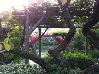亀戸天神社菊まつり太鼓橋.jpg