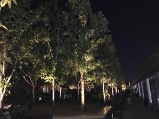 GINZASIX2017屋上ガーデン2.jpg