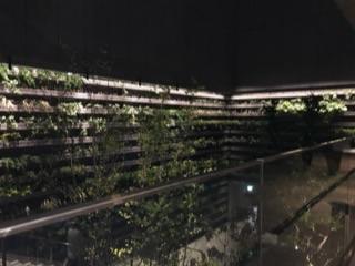GINZASIX2017屋上ガーデン14.jpg