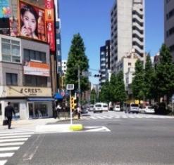 kodenmatoori-2 150515.jpg