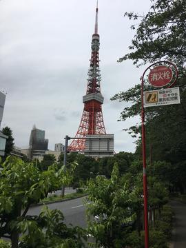 東京タワー5.jpg
