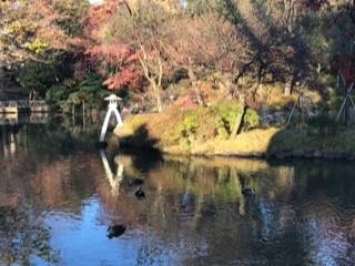 http://www.tokyustay.co.jp/hotel/YU/topics/1ddc55bdd22d6612ac621178f6b708a8269cf213.jpg