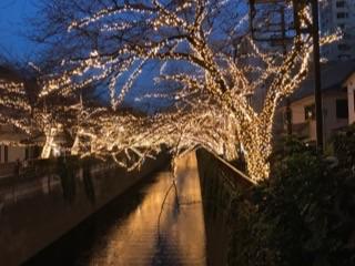 http://www.tokyustay.co.jp/hotel/YU/topics/2ff68756d9fc51851b5f74537aed006080d715f9.jpg